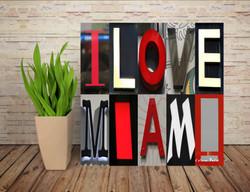 I LOVE MIAMI 03