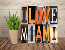 I LOVE MIAMI 04