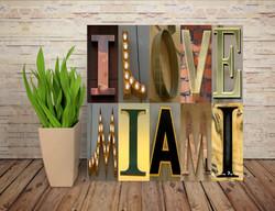 I LOVE MIAMI 01
