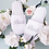 Thumbnail: Personalised Wedding Party Slippers