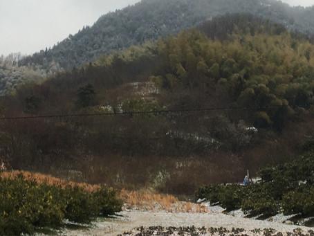 雪化粧の白滝山