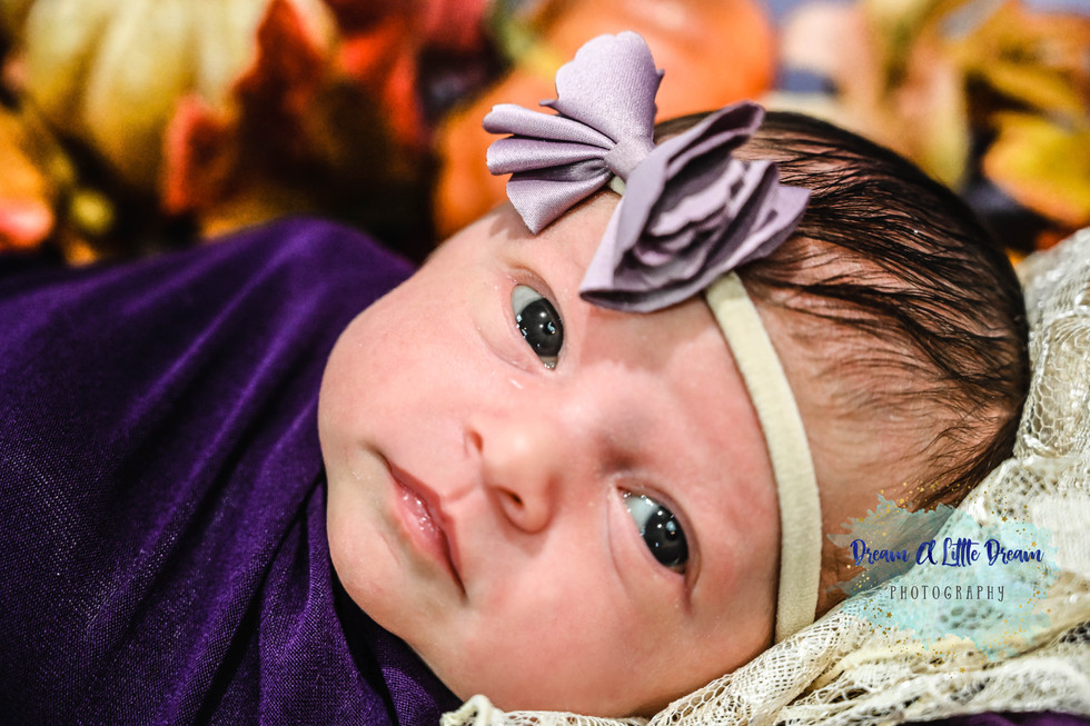 baby Abby-6.jpg