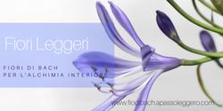 Fiori Leggeri-Elena Trezza