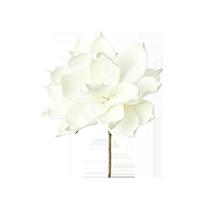 """CLX1124 - 6"""" Foam Floral Stem"""