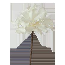 """CLX2280 - 36"""" Foam Ruffle Edge Floral Stem"""