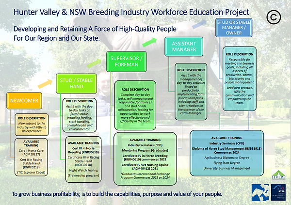 HV Career Pathways.PNG