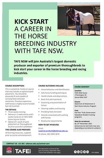 Horse Start Flyer 2021.PNG