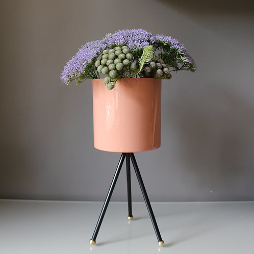 Cherie Spring_ Pink