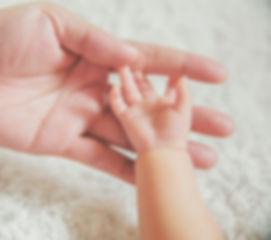 Adoption Information