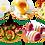 Thumbnail: Набор Eggies для варки яиц пашот 6 штук
