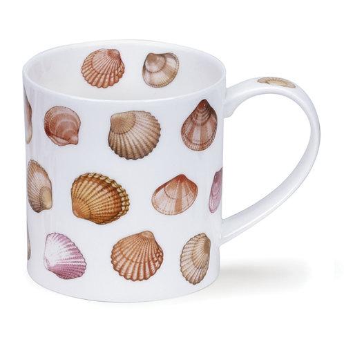 Orkney Shells - Dunoon fine English bone china
