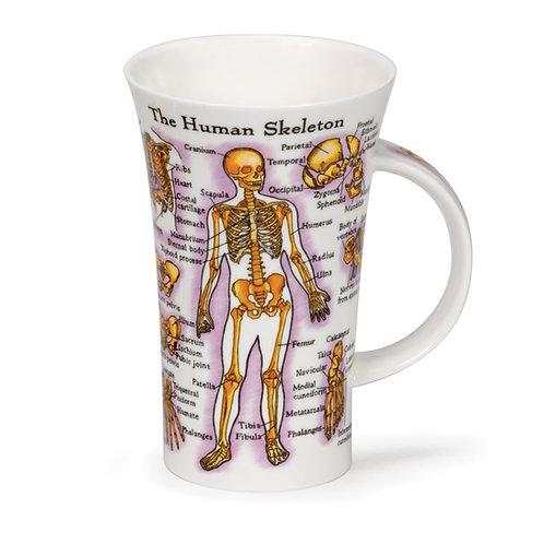Glencoe Human Skeleton Coffee and Tea Mug- Dunoon fine English bone china