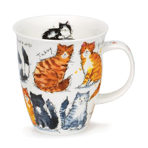 Nevis Messy Cats Coffee and Tea Mug- Dunoon fine English bone china