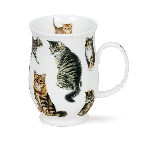 Suffolk Cats - Tabby - Dunoon fine English bone china