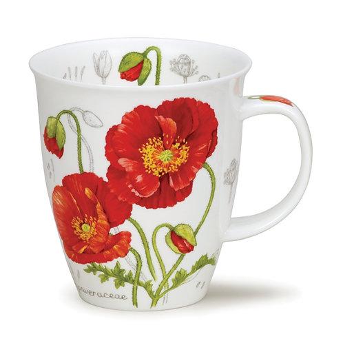 Nevis Botanical Sketch - Poppy - Dunoon fine English bone china