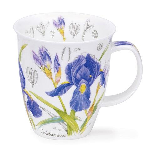 Nevis Floral Sketch - Iris - Dunoon fine English bone china
