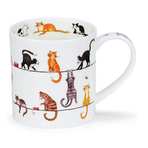 Orkney Live Wires - Cat Coffee and Tea Mug- Dunoon fine English bone china