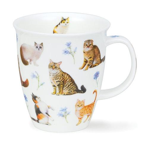 Nevis Flower Cats - Blue - Dunoon fine English bone china