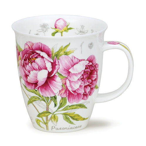 Nevis Botanical Sketch Peony Coffee and Tea Mug- Dunoon fine English bone china