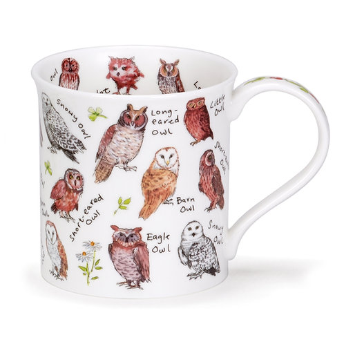 Bute Birdlife - Owls - Dunoon fine English bone china