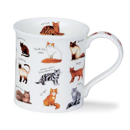 Bute Animal Breeds - Cat Coffee and Tea Mug- Dunoon fine English bone china