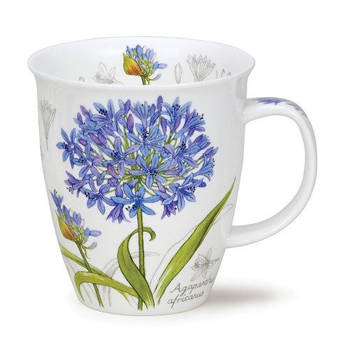 Nevis Botanical Sketch - Agapanthus - Dunoon fine English bone china