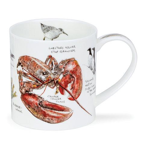 Orkney Seaside Notebook - Lobster offee and Tea Mug- Dunoon fine English bone china