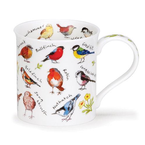 Bute Mixed Garden Birds Coffee and Tea Mug- Dunoon fine English bone china