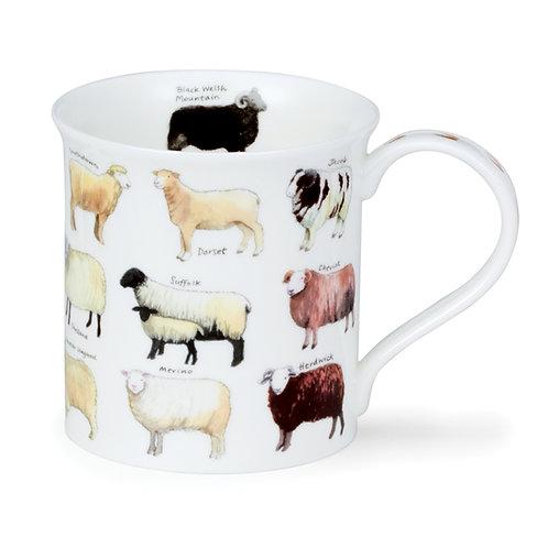 Bute Animal Breeds - Sheep - Coffee and Tea Mug- Dunoon fine English bone china