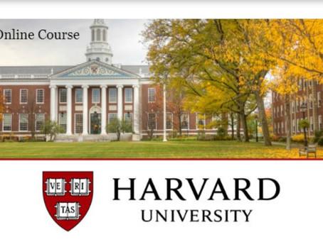Foco nas oportunidades! Faça curso da Harvard grátis e online.