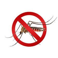 FOCO NA SAÚDE! Ministério da Saúde lança campanha de combate ao mosquito Aedes aegypti