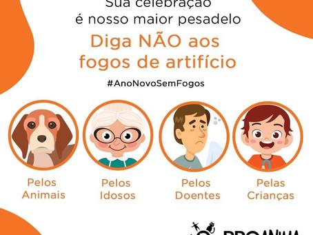 Foco especial! TODO FINAL DE ANO É FOGO, QUE TAL RECEBER 2021 SEM FOGOS DE ARTIFÍCIO?