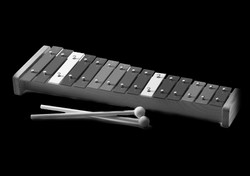 Xylophone Lessons
