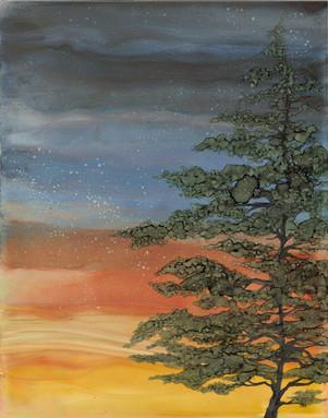 """Netarts Bay Sunset"""