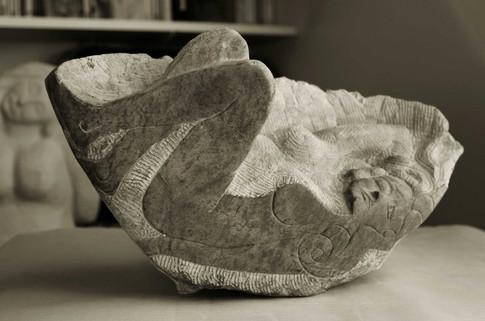 la belle endormie coquille.jpg