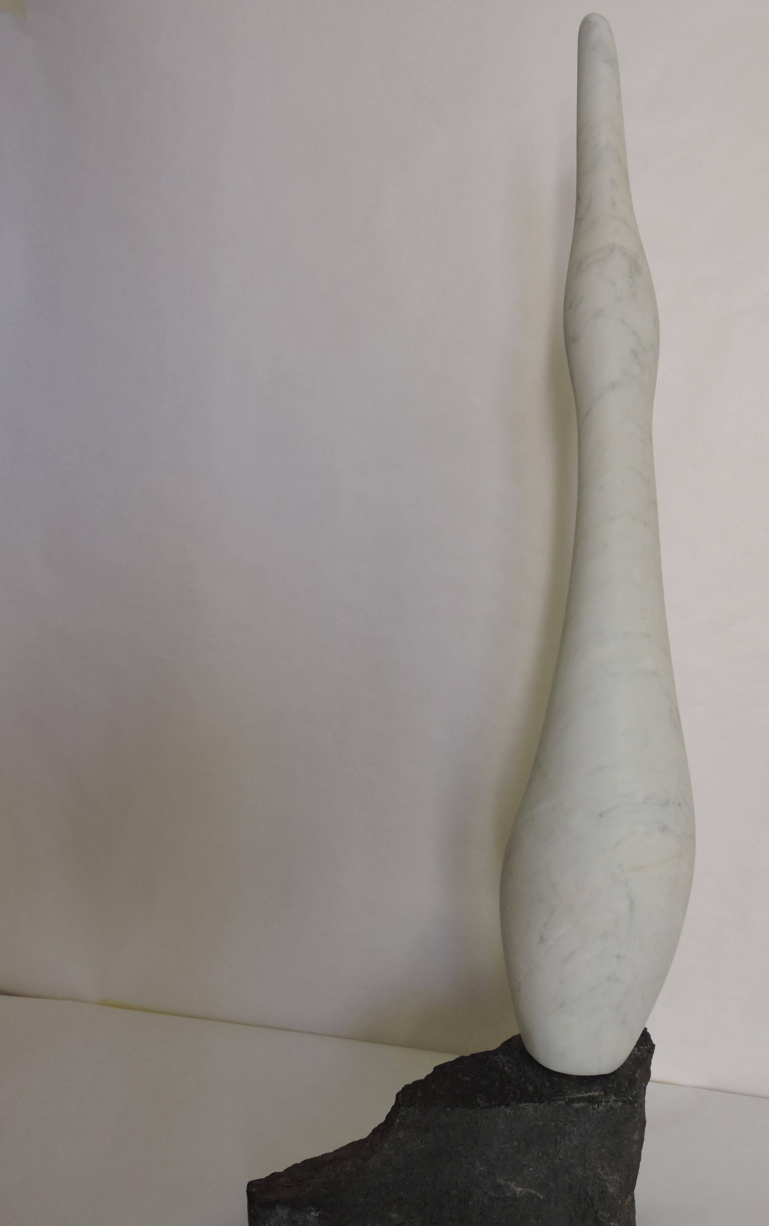 Oie  - marbre