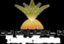 flyin_hawaiian_logo_2016.png