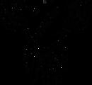 b&w logo high dpi.png