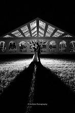 wedding.9.png