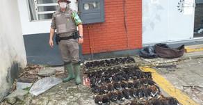 BM efetua prisão por porte ilegal de arma e abate de animais silvestres no Litoral Norte