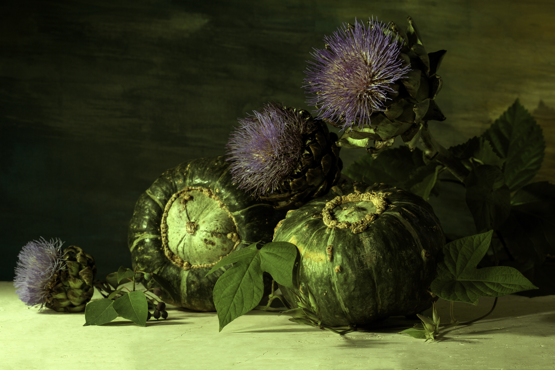 Flowering Artichokes with Pumpkins