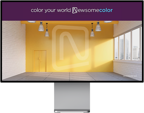 newsomecolor_home.png