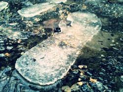 Frozen Steps..