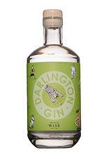 darlington gin.jpg
