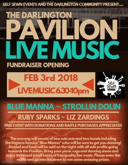 Darlington Pavilion Music Night-Poster
