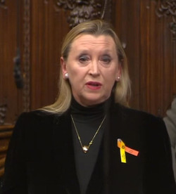 Baroness Healy of Primrose Hill