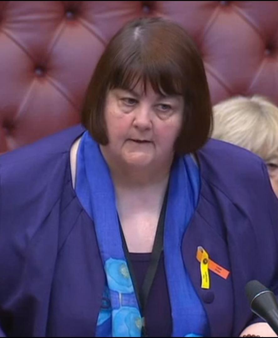 Baroness Wilcox of Newport