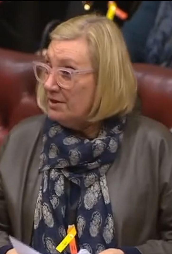 Baroness Nye
