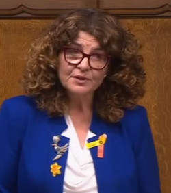 Dame Diana Johnson MP