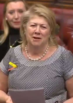 Baroness Goudie